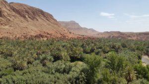 Todra oasis unik maroc tours
