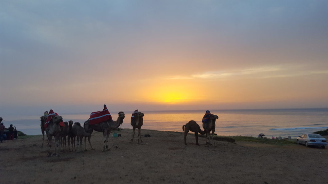 Las 11 mejores cosas que hacer en Marruecos