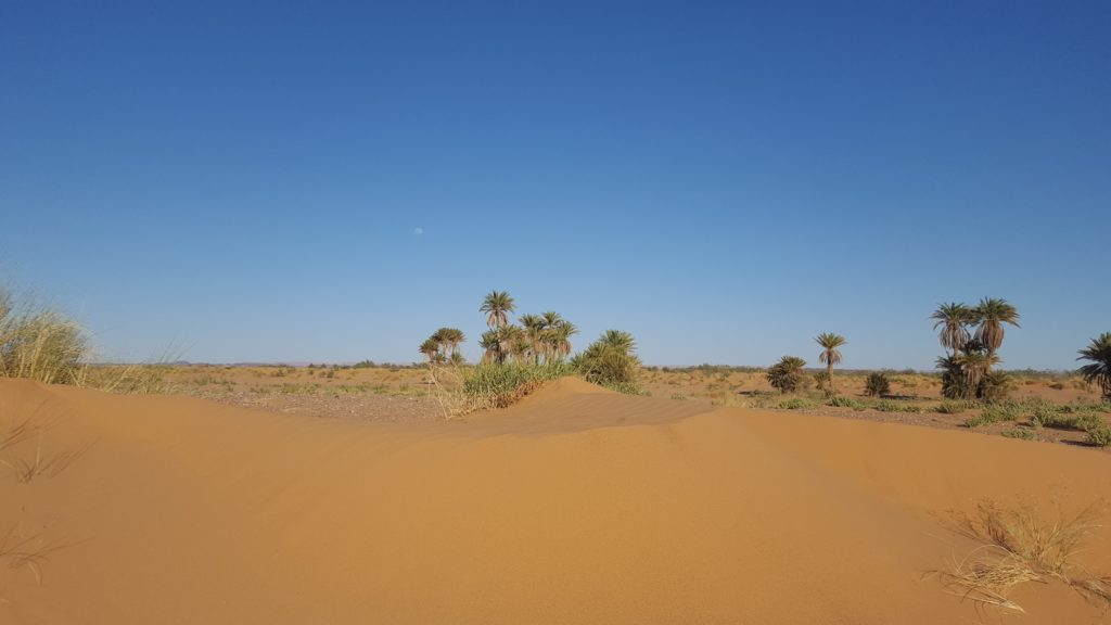 from costa del sol to Morocco desert unik maroc tours