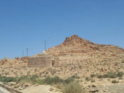 Marabú en Marruecos